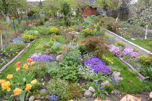 ogród Haliny